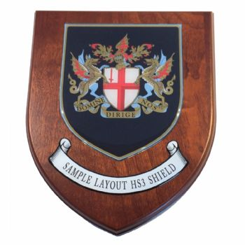 Presentation shield with shield shaped centrepiece and scroll.